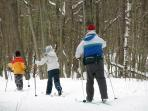 Cross Country skiing at Hilton Falls; rentals available, car pass provided