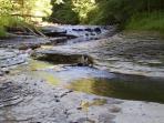 Chautauqua Creek Gorge