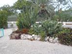Shore Home: Exotic Garden