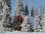 Log cabin rentals in the foothills of Alberta
