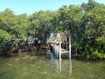 Island: Shallow Water Dock