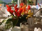 Tropical Flower Arrangement - Local Florist