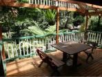 Large verandah perched over your private stream and surrounded by rainforest and butterflies