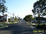 Neighborhood walks