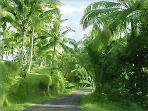 Romantic Road to Ubud