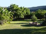 Nectar Cottage garden