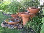 Constantia Cottages - Garden/Water Feature