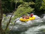 White water rafting at Natahala Gorge about 45 minutes away.
