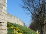 York Walls in the Spring - a lovely City to Visit
