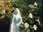 The 'Umbrian Madonna' is protecting Countryhouse Villa La Rogaia Umbria, Lake Trasimeno