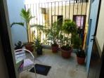 Shade garden off Kitchen
