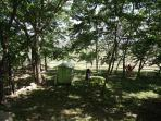 All-day shade in side garden with children´s play tent, picnic table, supervisor´s hammock nearby !