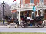 Carriage Tours available
