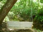 Romantic Swing suspended from large tree at end of path by the creek