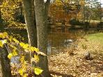 White Stone Manor grounds during the Fall Season