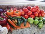 Farmers' Market Goodies