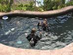 You can get SCUBA certified in our pool