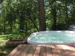 Hot Tub and yard with hammock