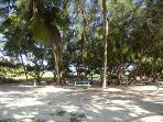 picnic aerea nearby