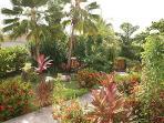 Hibiscus Retreat Gardens