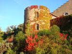castle tower in autumn fall
