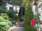 Take this enchanting hidden stairway, known as the Esmeralda Steps, to the top of Bernal Heights.