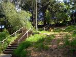 Stairway to the top of Bernal Heights; you\'re almost there, you can see the sky poking through!