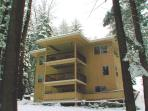 Rear View of Pine Arbor Retreat in Snow