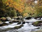 mountain  streams everywhere