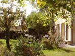 Guest villa garden