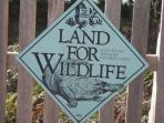 Wild Life conservation