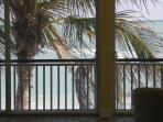 looking out the lani