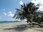 Zoni beach Culebra