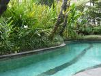 The Outdoor freshwater Pool in the garden