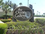 WELCOME TO THE OCEAN GALLERY!