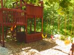 Jungle Gym in backyard