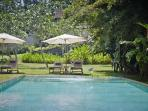 The Petals - tranquil gardens overlooking paddy