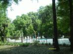 Pool at Preserve