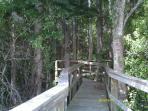 Boardwalk to Rainbow River