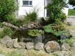 The small pond outside the kitchen