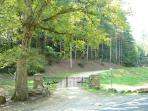 Black Forest Entrance-Gated Community