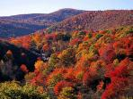 Fall Colors Special! Only $899/Weekend $1899/Week