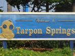 Welcome to Tarpon Springs.  Come experience the charm, history and culture of the town.