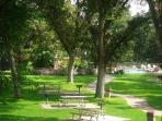 Tree studded picnic grounds with plenty of tables & charcoal grills