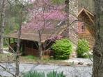 Crabtree falls rental also available on TripAdvisor,beautiful at Crabtree Falls