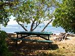 Pauwalu-Picnic table at beach