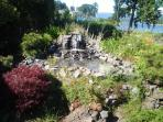 Guest Photo - Water Feature