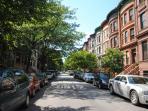 Tree Line Street