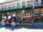 Carriage Riders Enjoying Our Section of Magazine St., 1 Block From Our Condo (Walk It)!