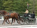 GREEN MOUNTAIN HORSE ASSOCIATION, EVENTS EVERY WEEKEND ALL SUMMER
